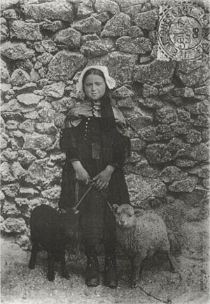 carte fillette et moutons d'ouessant